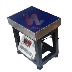 Cân ghế điện tử A12 100kg 7