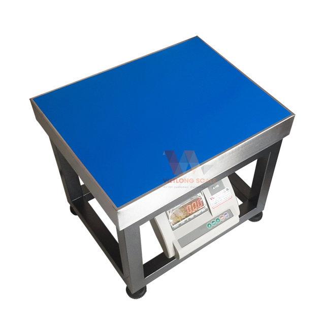 Cân ghế điện tử A12 300kg 8