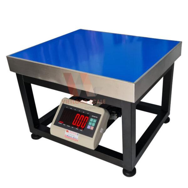 Cân ghế điện tử T7E 500kg 1