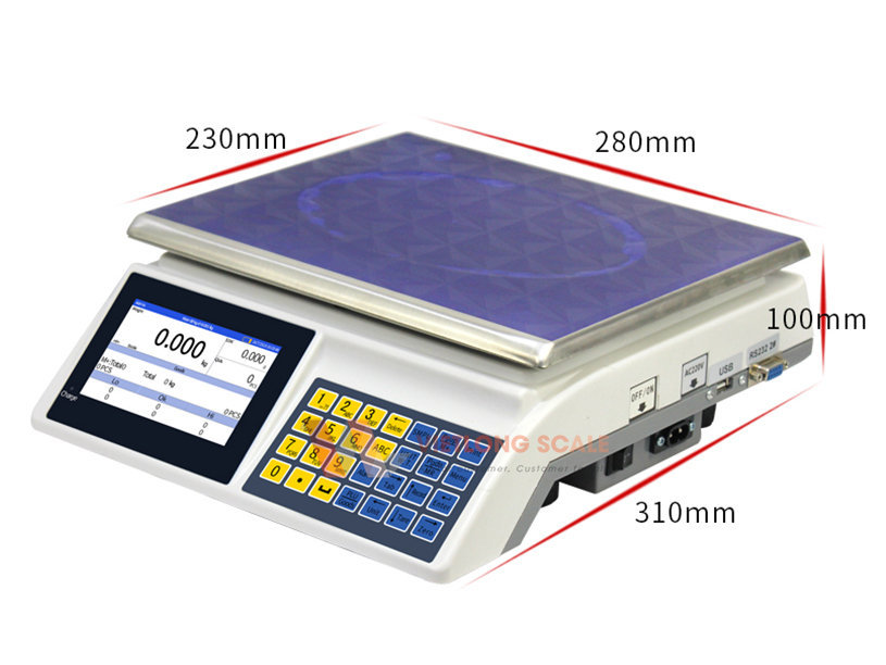 Cân đếm điện tử TPS DS 8